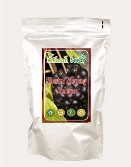 SIBERIAN GINGSENG BIOLOGICO IN POLVERE 100 gr